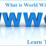 What Is World Wide Web (WWW)