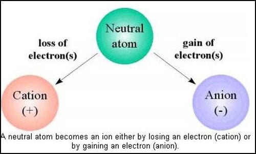 Cation VS Anion