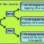 Uses of the article with examples (A, An and the) in Grammar