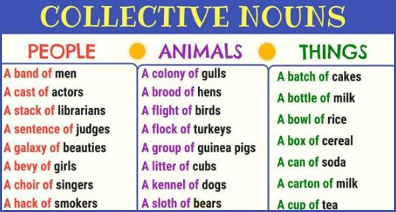 Collective Nouns list