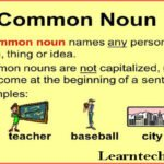 Common Noun with examples, definition and more