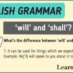 Difference Between Shall And Will With Examples Details
