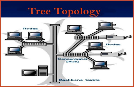 Block diagram of Tree Topology