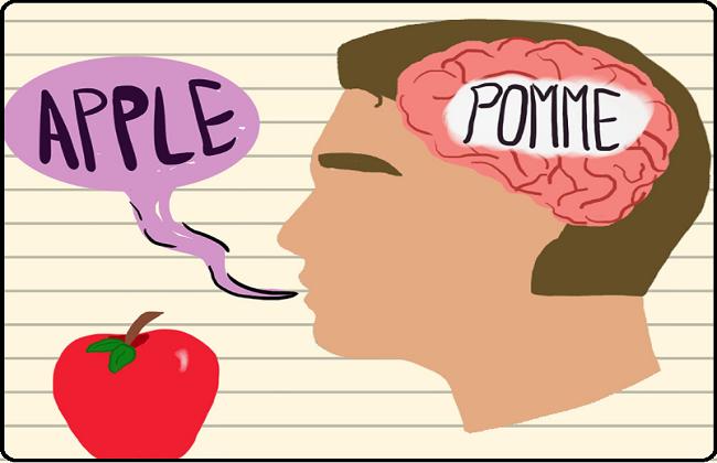Bilingualism or Multilingualism